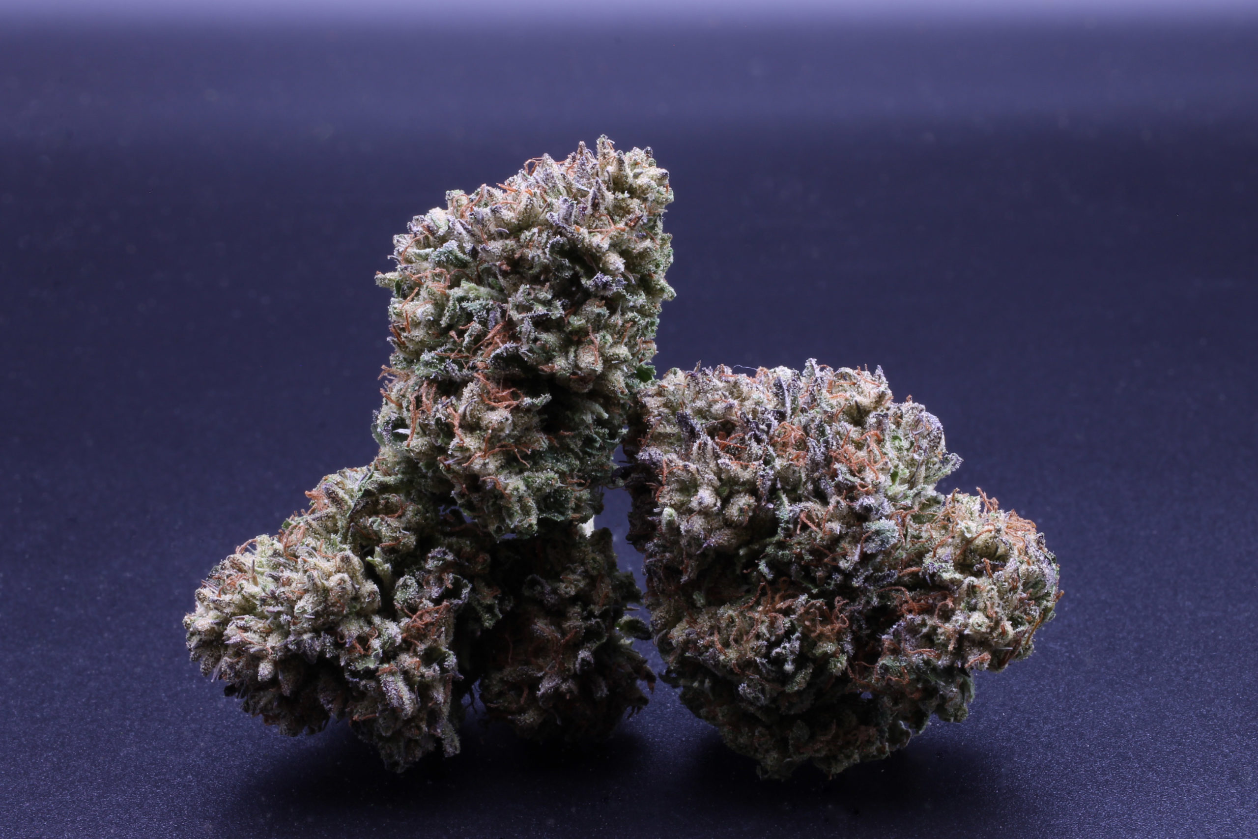 Sweet Grass White Tahoe Cookies